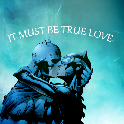 Bruce Wayne And Selina Kyle Images Batman And Catwoman Wallpaper And