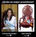 CFKvsLadrillo