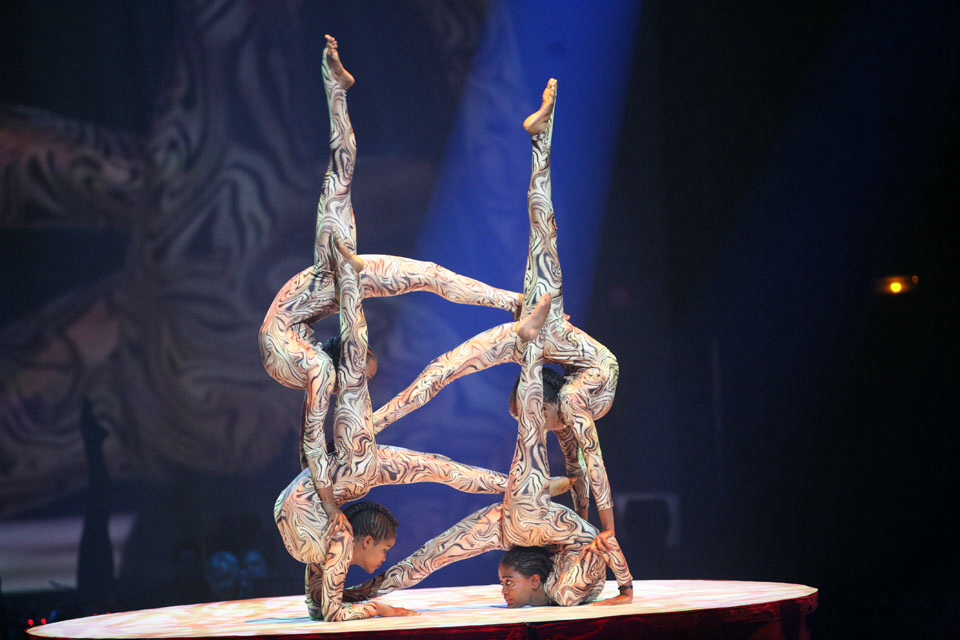 Contortion group