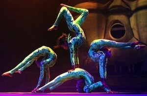 Contortionist group