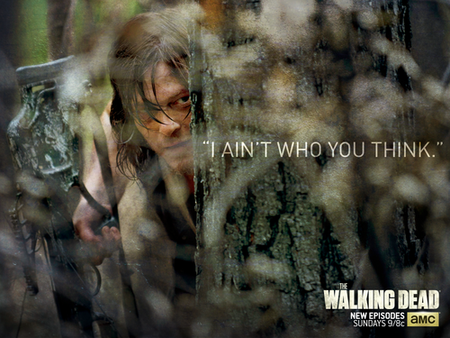 The Walking dead wallpaper entitled Daryl Dixon