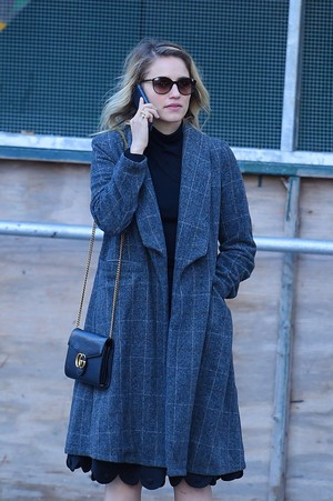 Dianna out in NYC