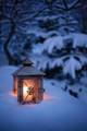 Dreamy Winter Lights - daydreaming photo