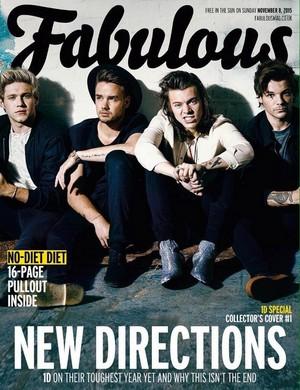 Fabulous Cover