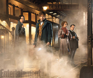 Fantastic Beast and Where to Find Them - First fotos