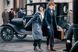 Fantastic Beasts and Where to Find Them - First 照片