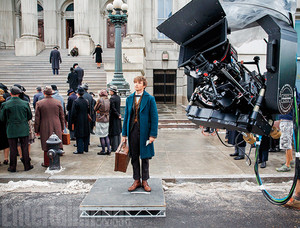 Fantastic Beasts and Where to Find Them - First Fotos
