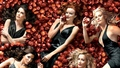 Forbidden Fruit - desperate-housewives wallpaper