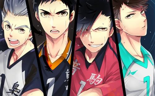 Haikyuu!!(High Kyuu!!) 壁纸 called Haikyuu!! Captains