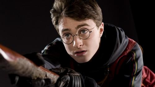 হ্যারি পটার দেওয়ালপত্র called Harry Potter
