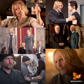 the-hunger-games - Haymitch Abernathy wallpaper