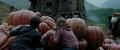 Hermione Screencaps - hermione-granger photo