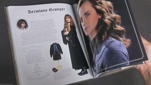 Hermione in 'Harry Potter: The Character Vault'