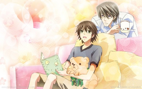 yaoi fondo de pantalla possibly containing anime called Junjou Romantica fondo de pantalla