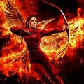 Katniss Everdeen - the-hunger-games wallpaper