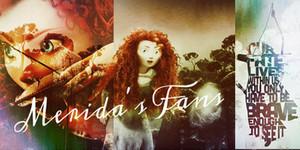 Merida fans banner