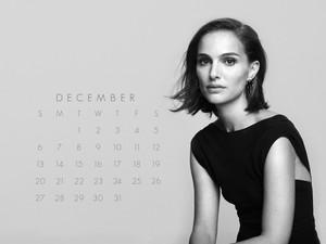 NP.COM Calendar - December