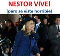 Nestor vive