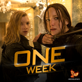 the-hunger-games - One Week wallpaper