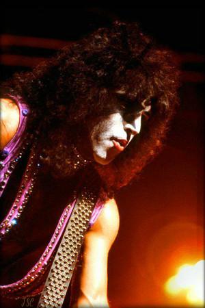 Paul 1979 (Dynasty)