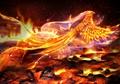 Phoenix  - fantasy photo
