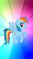 Rainbow Dash - rainbow-dash wallpaper