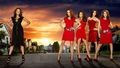 Renee vs. the Housewives - desperate-housewives wallpaper