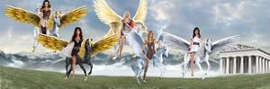 Sexy амазонка Women riding their Beautiful Pegasus Steeds