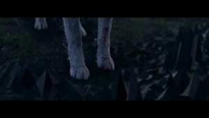 She serigala, wolf (Falling To Pieces) {Music Video}