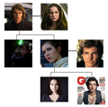 Star Wars Possible Family Tree