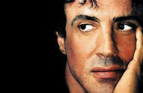 Sylvester Stallone wallpaper with a portrait called Sylvester Stallone