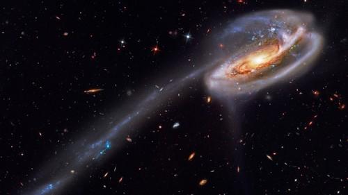 Science News kertas dinding with a mata air, air pancut titled Tadpole Galaxy