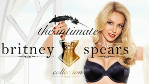 The Intimate Britney Spears (Collection)