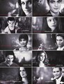 The Twilight Cast - fallingsparks photo