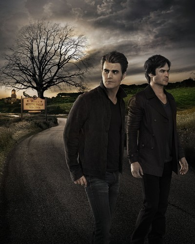 The Vampire Diaries wallpaper containing a business suit, a suit, and a well dressed person called The Vampire Diaries Stefan and Damon Salvatore Season 7 Official Portrait