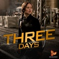 Three Days - the-hunger-games photo