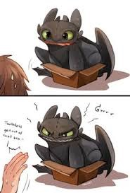 Toothless in a box! XD
