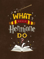 What Would Hermione Do? - harry-potter fan art