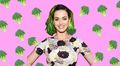 katy-perry - katy perry hair looks like brussel wallpaper