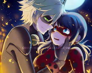 ººLadybug-Chat Noirºº