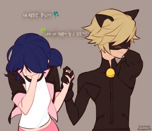 chat and marinette