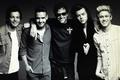1D and Sven Jacobsen - one-direction wallpaper