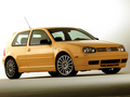 2003 Volkswagen GTI 20th anniversary  - volkswagen photo