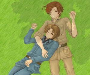 APH N.Italy and S.Italy