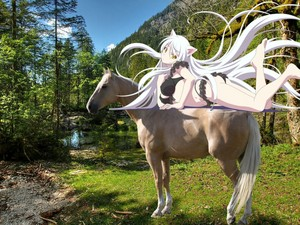 Black Hanekawa on her Beautiful کے palomino, پالومانو Horse