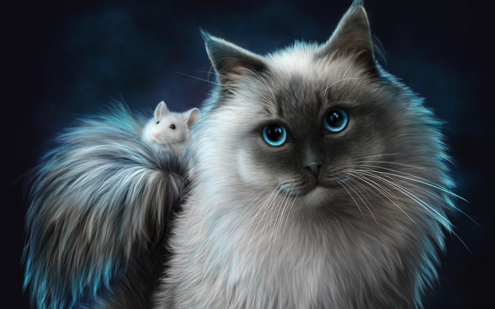 猫 图片 cat and 老鼠, 鼠标 hd 壁纸 and background