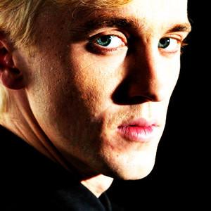 Draco Malfoy shabiki Art