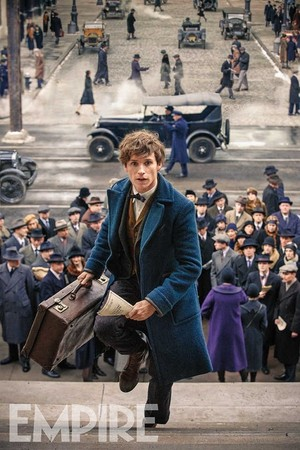 Fantastic Beasts and Where to Find Them - NEW Image