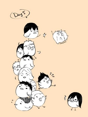 Haikyuu!! birds