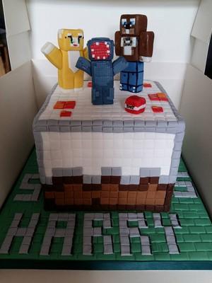 Harry Gibbins Stampy Cake